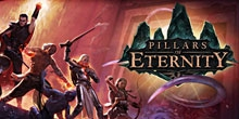 Купить Pillars of Eternity Hero Edition