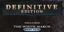 Купить Pillars of Eternity Definitive Edition